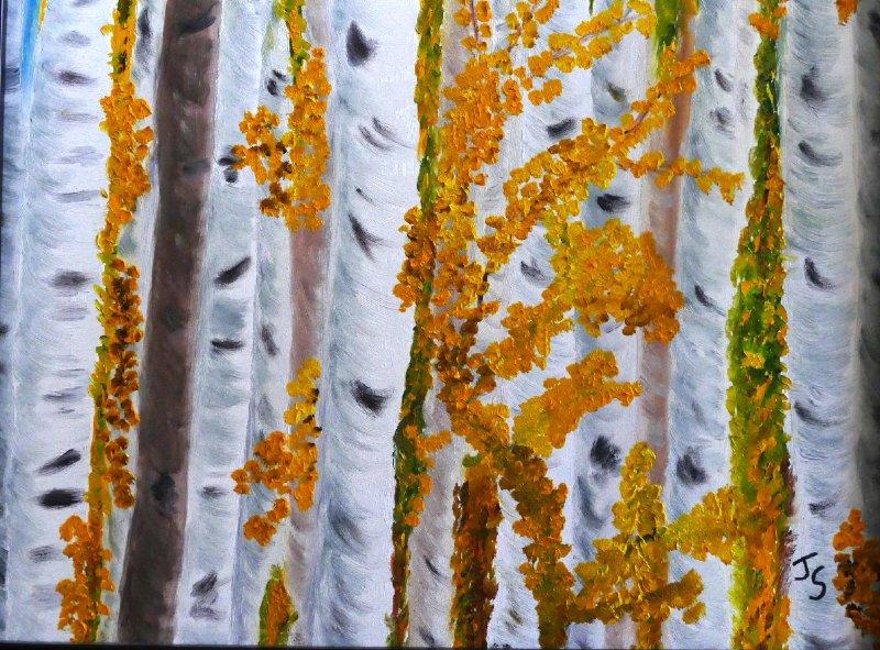 """""""Colorado Aspens"""", Oil, 12x12"""