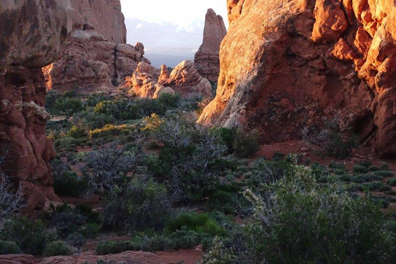 """""""Sunrise, Arches National Park, Utah"""""""