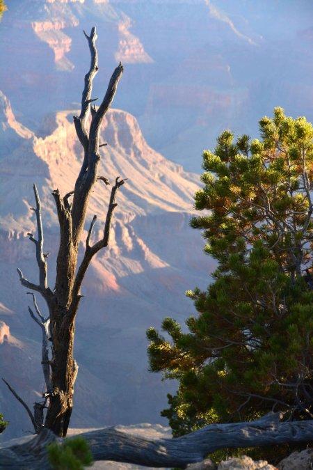 """Sunrise, Grand Canyon"""