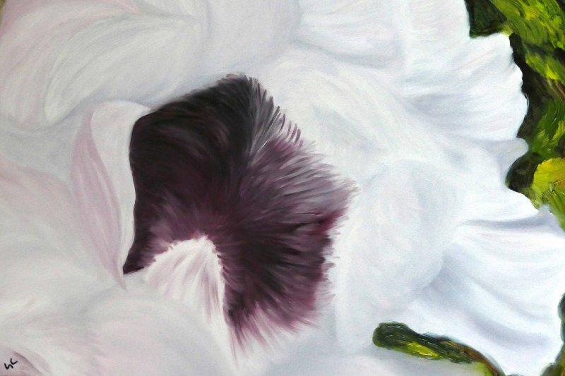 """""""White Poppies"""", Oil, 16x20"""