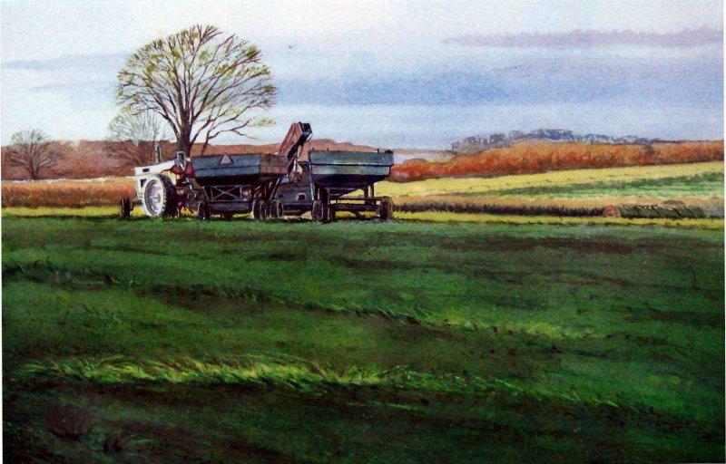 """""""Spring Harvest"""""""